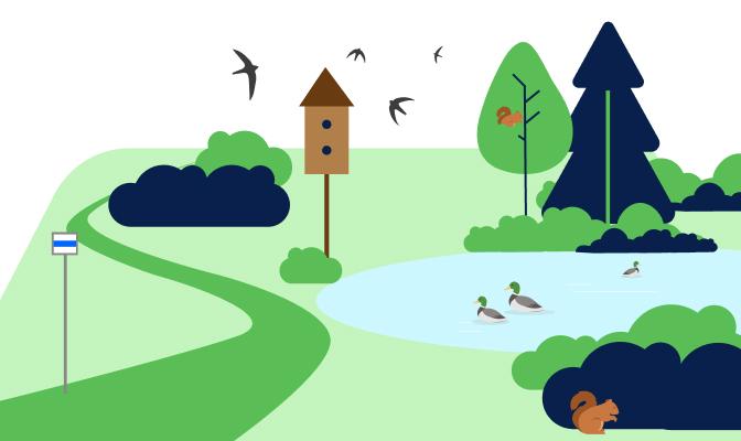 Rewitalizacja parków