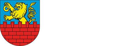 Logo miejscowości Nasielsk