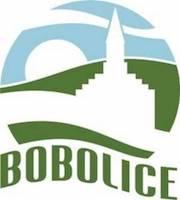 Logo miejscowości Bobolice